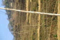 Chilankha_1_Installation of Electric poles